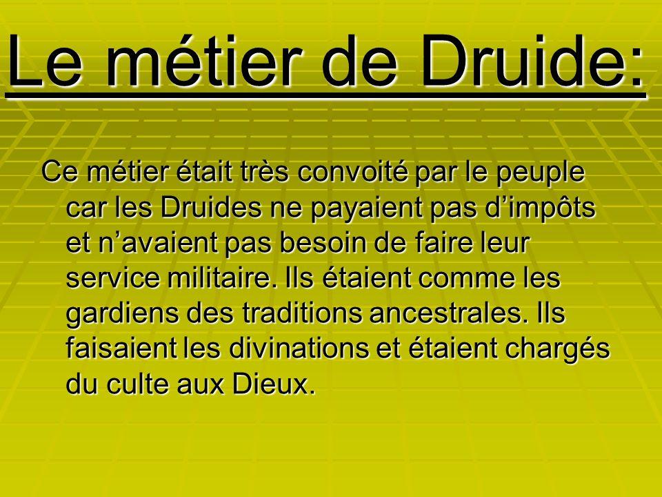 Le métier de Druide: