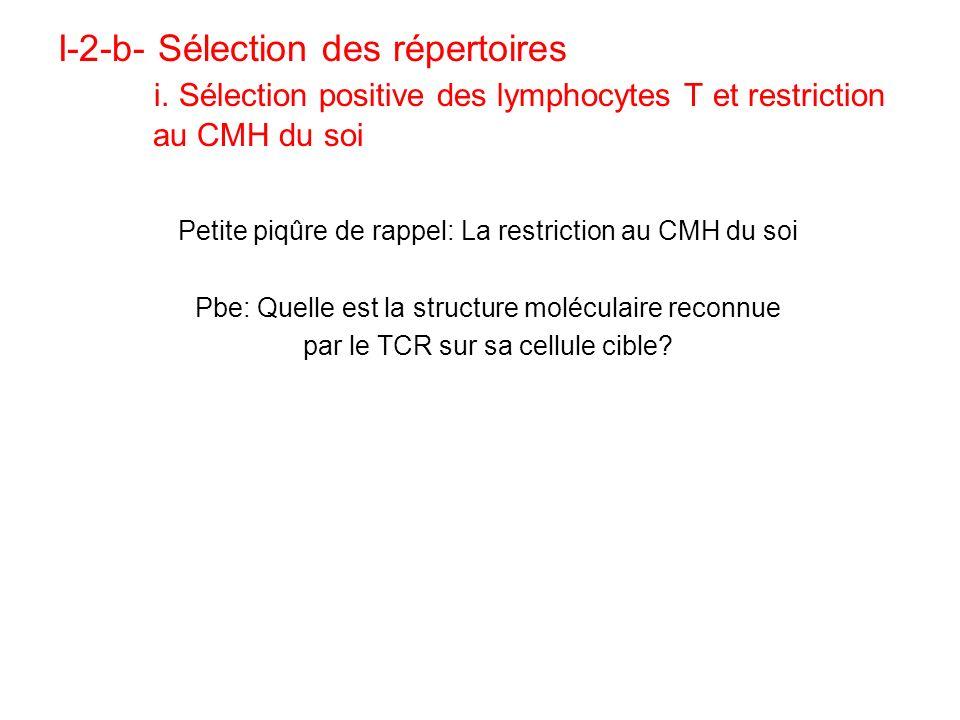 I-2-b- Sélection des répertoires. i