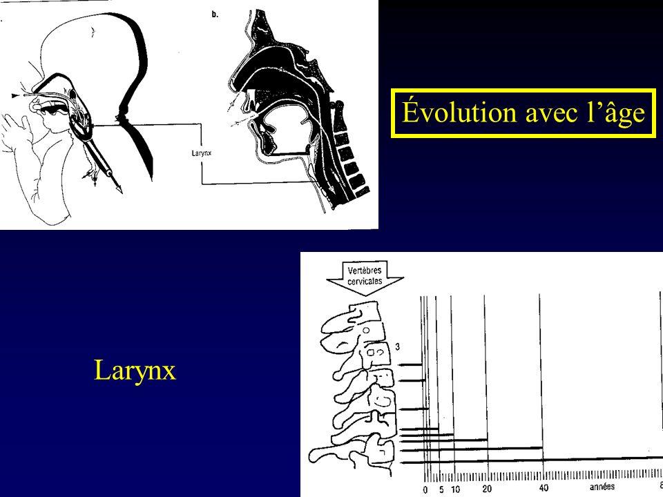 Évolution avec l'âge Larynx