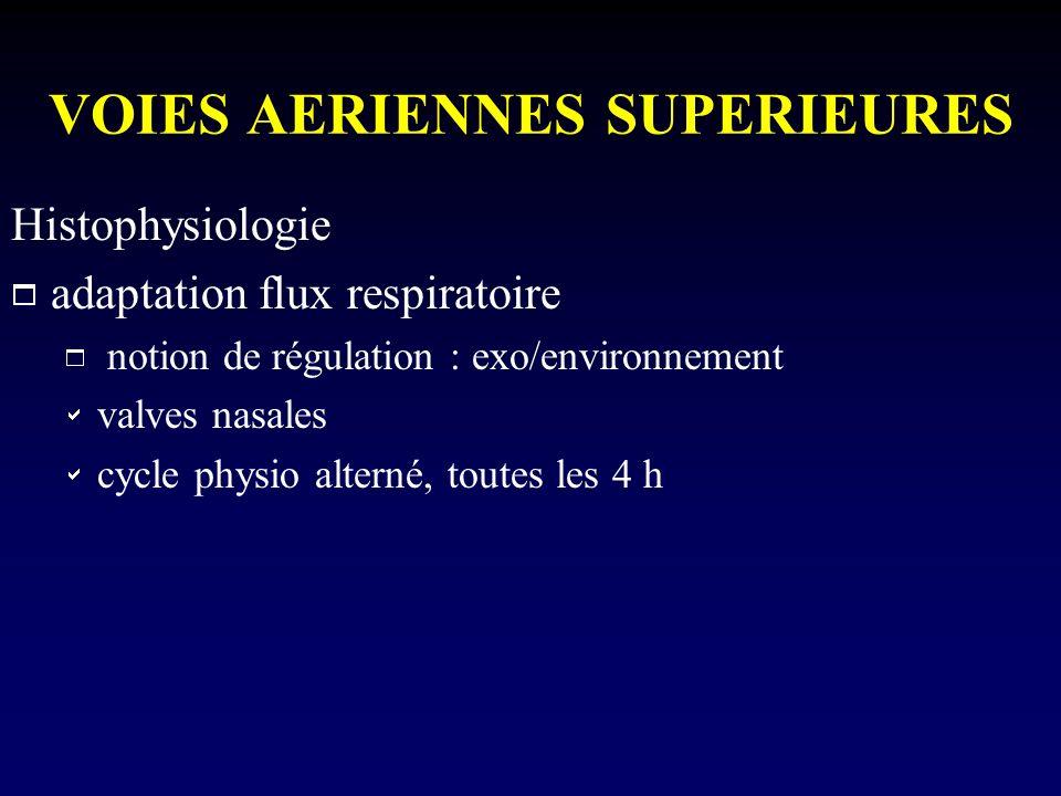 VOIES AERIENNES SUPERIEURES