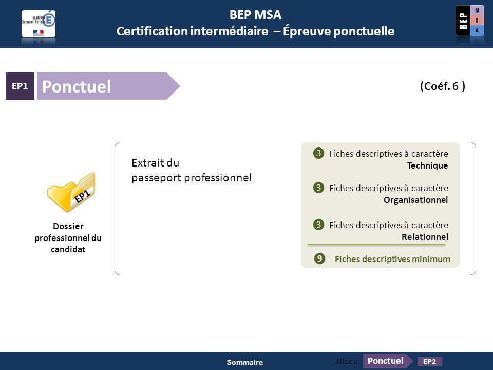 Ponctuel BEP MSA Certification intermédiaire – Épreuve ponctuelle