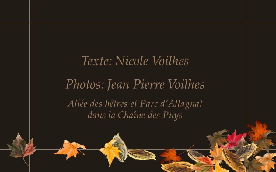 Photos: Jean Pierre Voilhes
