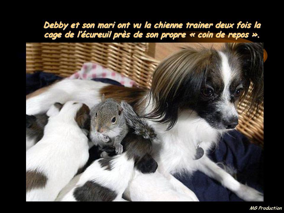 Debby et son mari ont vu la chienne trainer deux fois la cage de l'écureuil près de son propre « coin de repos ».
