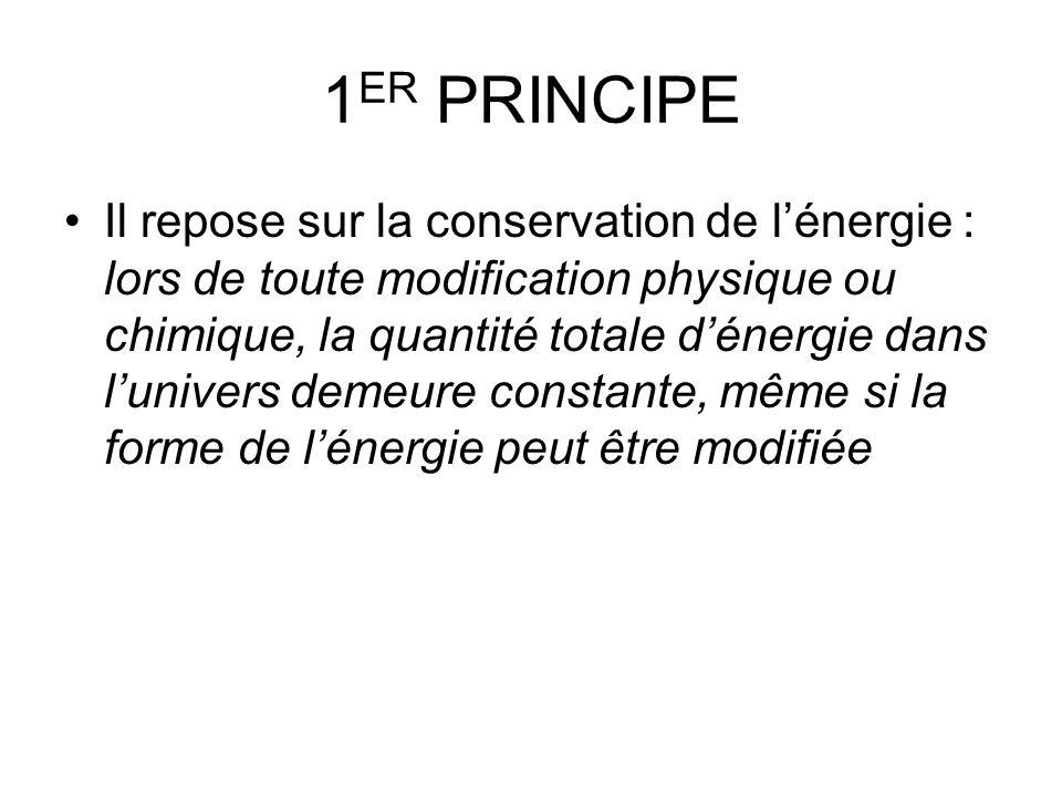 1ER PRINCIPE