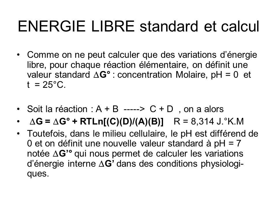 ENERGIE LIBRE standard et calcul