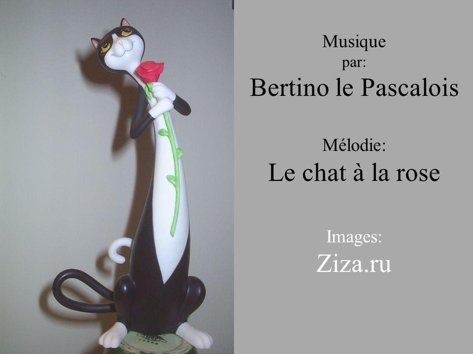 Bertino le Pascalois Le chat à la rose Ziza.ru Musique Mélodie:
