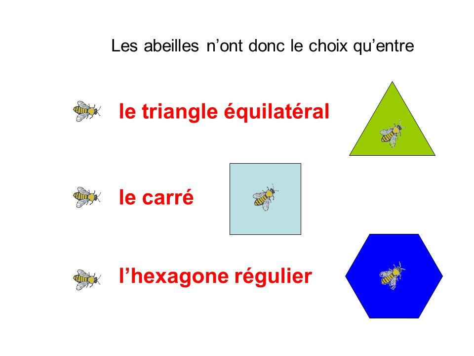 le triangle équilatéral