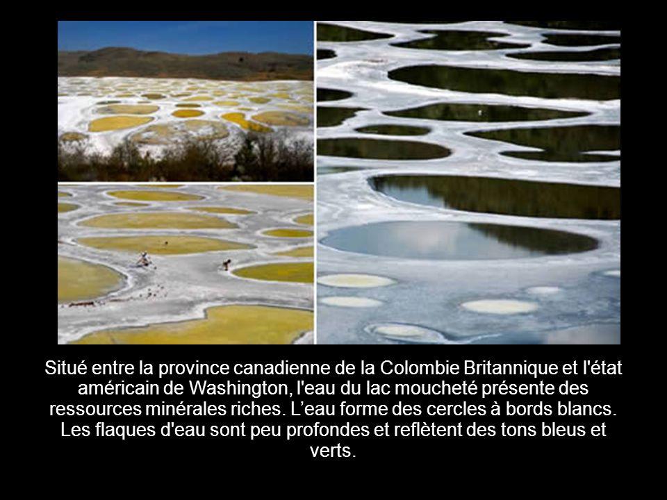 Situé entre la province canadienne de la Colombie Britannique et l état américain de Washington, l eau du lac moucheté présente des ressources minérales riches.