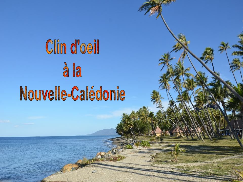Clin d oeil à la Nouvelle-Calédonie