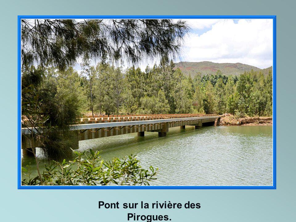 Pont sur la rivière des Pirogues.