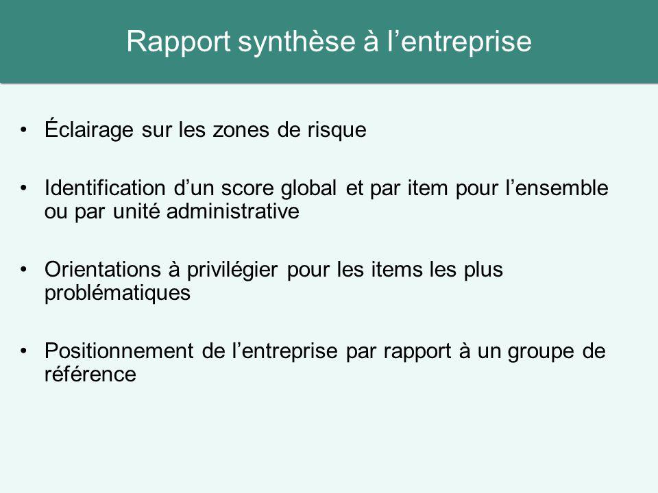 Rapport synthèse à l'entreprise