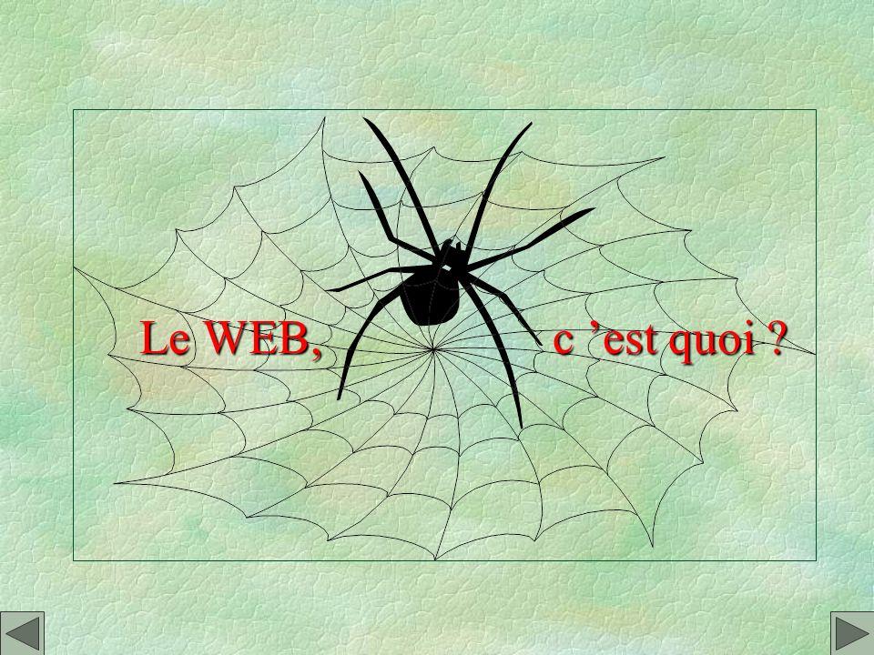 Le WEB, c 'est quoi