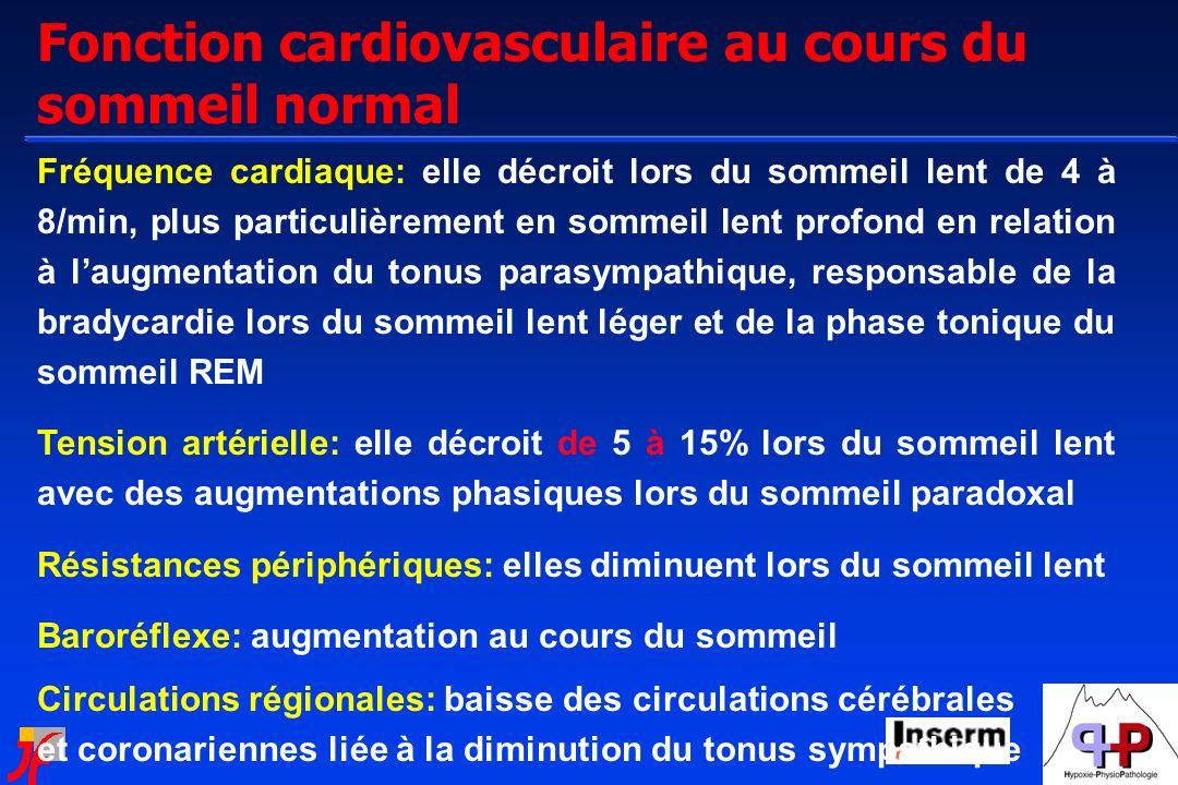 Fonction cardiovasculaire au cours du sommeil normal