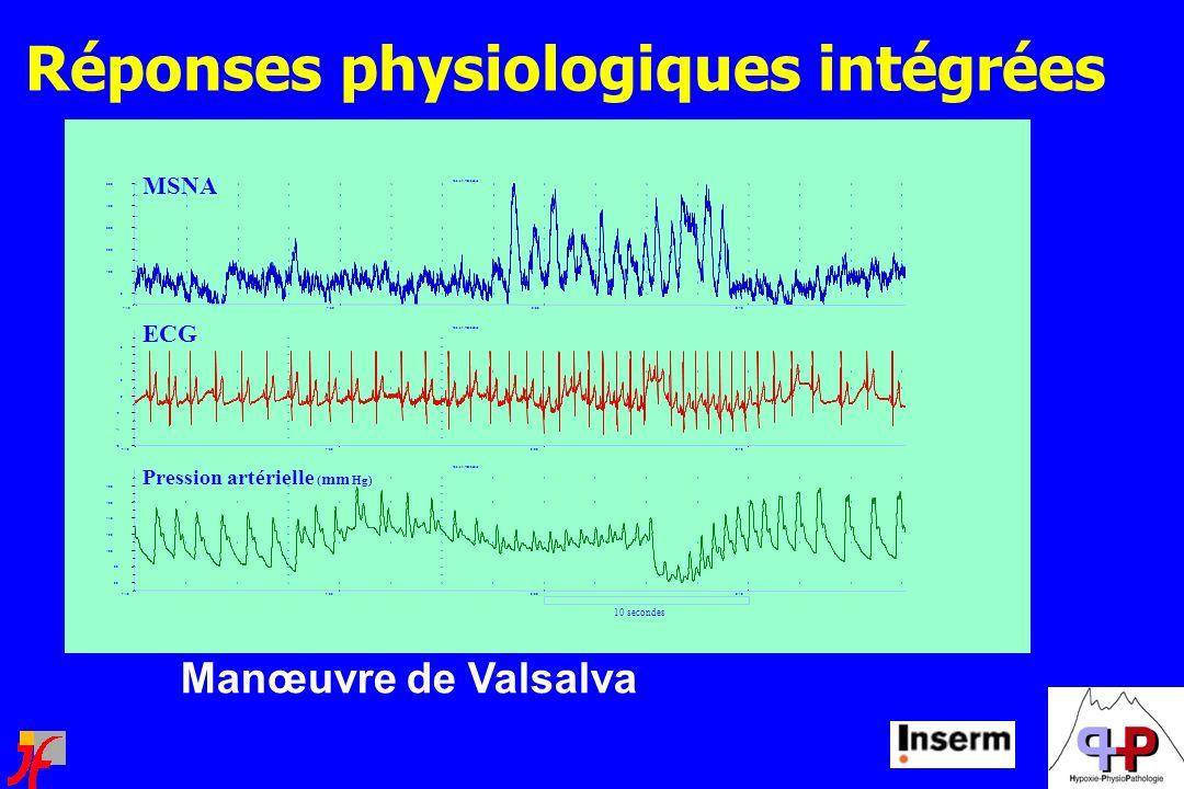 Réponses physiologiques intégrées