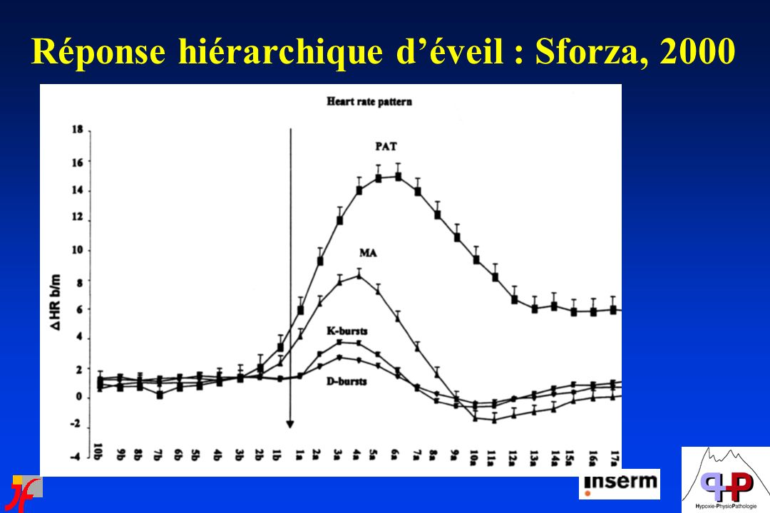 Réponse hiérarchique d'éveil : Sforza, 2000