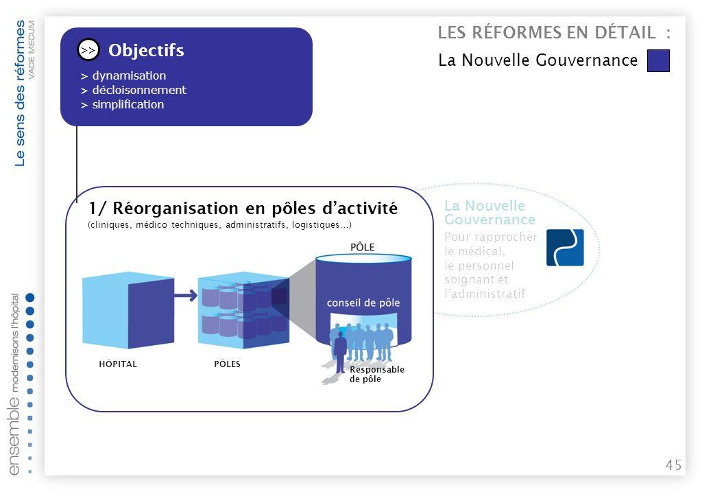 LES RÉFORMES EN DÉTAIL : La Nouvelle Gouvernancefn,b Objectifs
