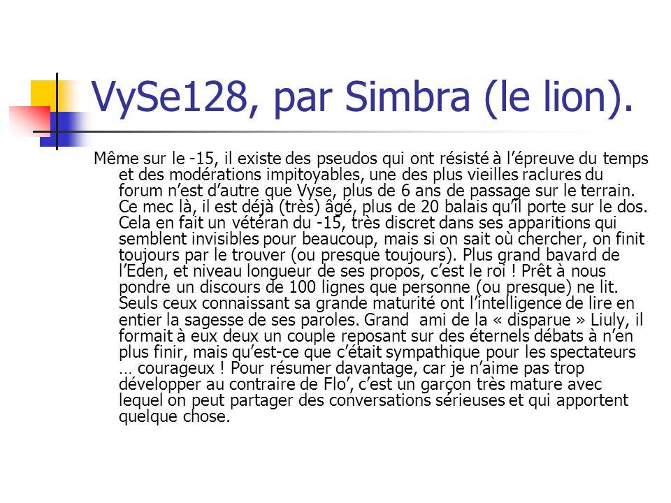 VySe128, par Simbra (le lion).