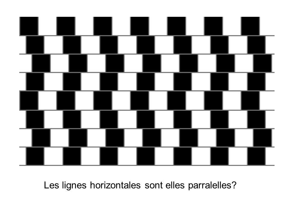 Les lignes horizontales sont elles parralelles