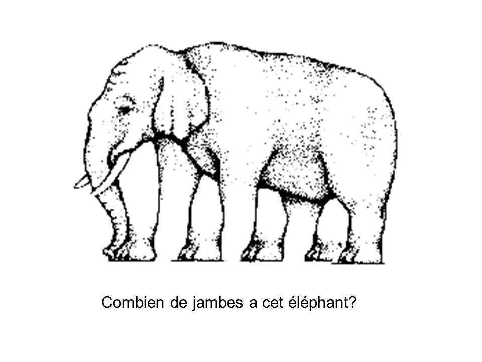 Combien de jambes a cet éléphant