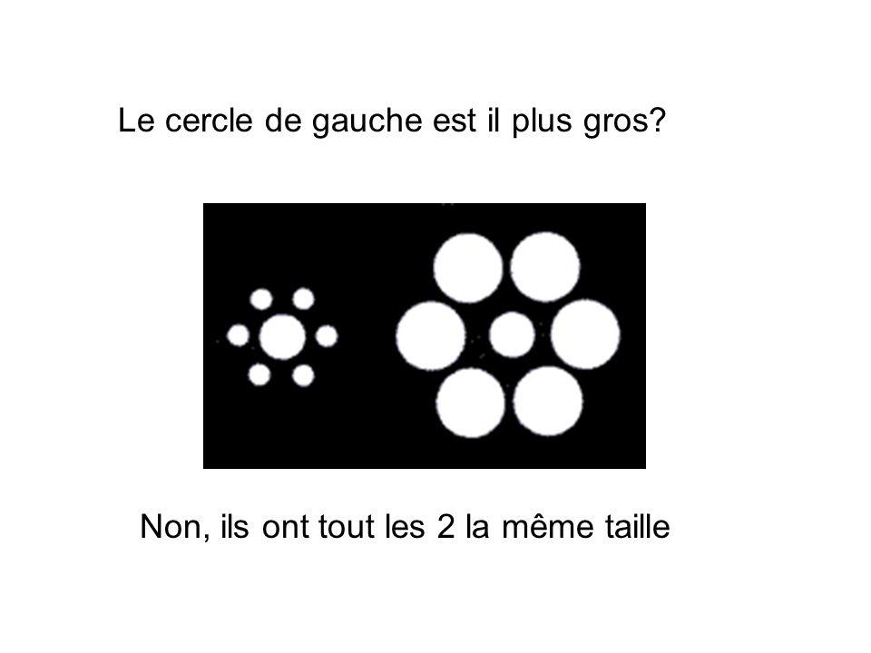 Le cercle de gauche est il plus gros