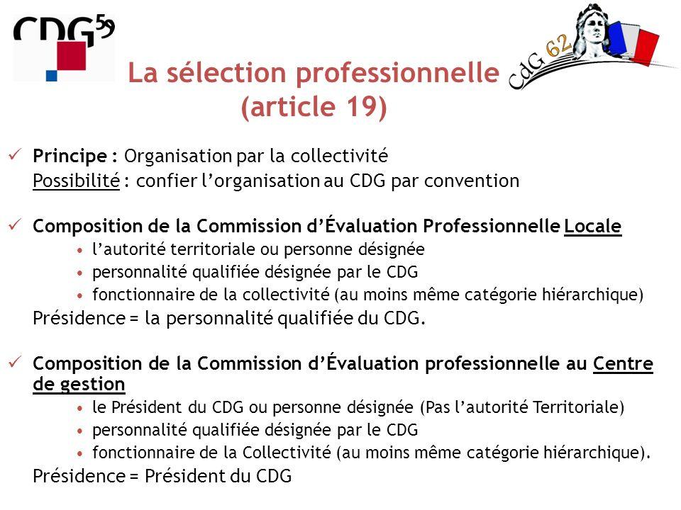 La sélection professionnelle (article 19)