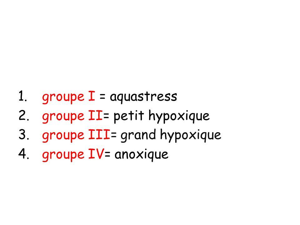 groupe I = aquastress groupe II= petit hypoxique groupe III= grand hypoxique groupe IV= anoxique