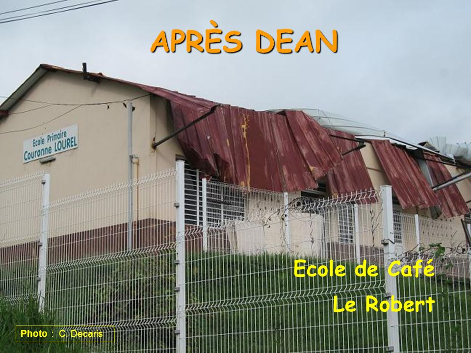 APRÈS DEAN Ecole de Café Le Robert Photo : C. Decaris