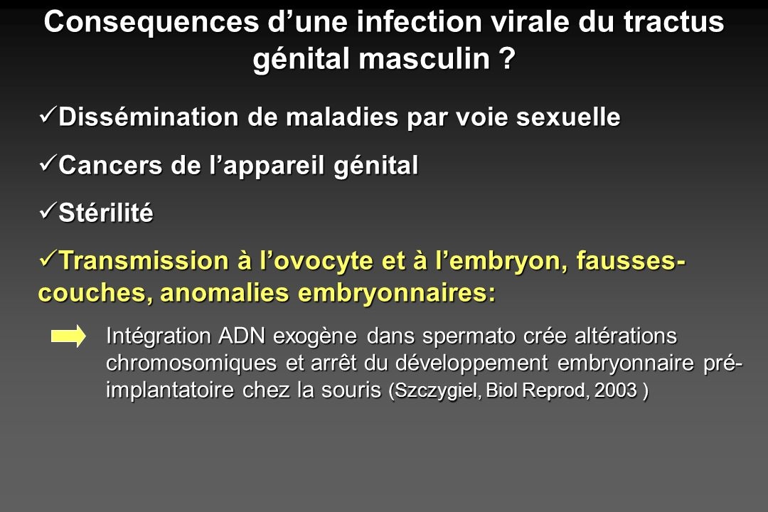 Consequences d'une infection virale du tractus génital masculin