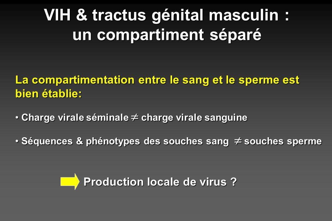 VIH & tractus génital masculin : un compartiment séparé