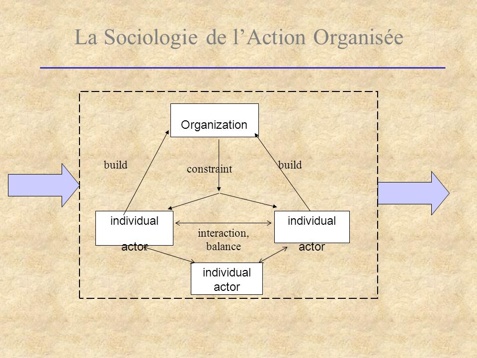 La Sociologie de l'Action Organisée