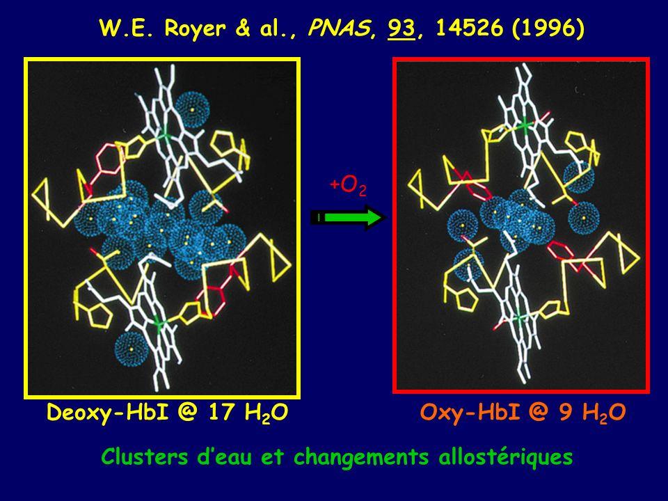 W.E. Royer & al., PNAS, 93, 14526 (1996) +O2. Deoxy-HbI @ 17 H2O.