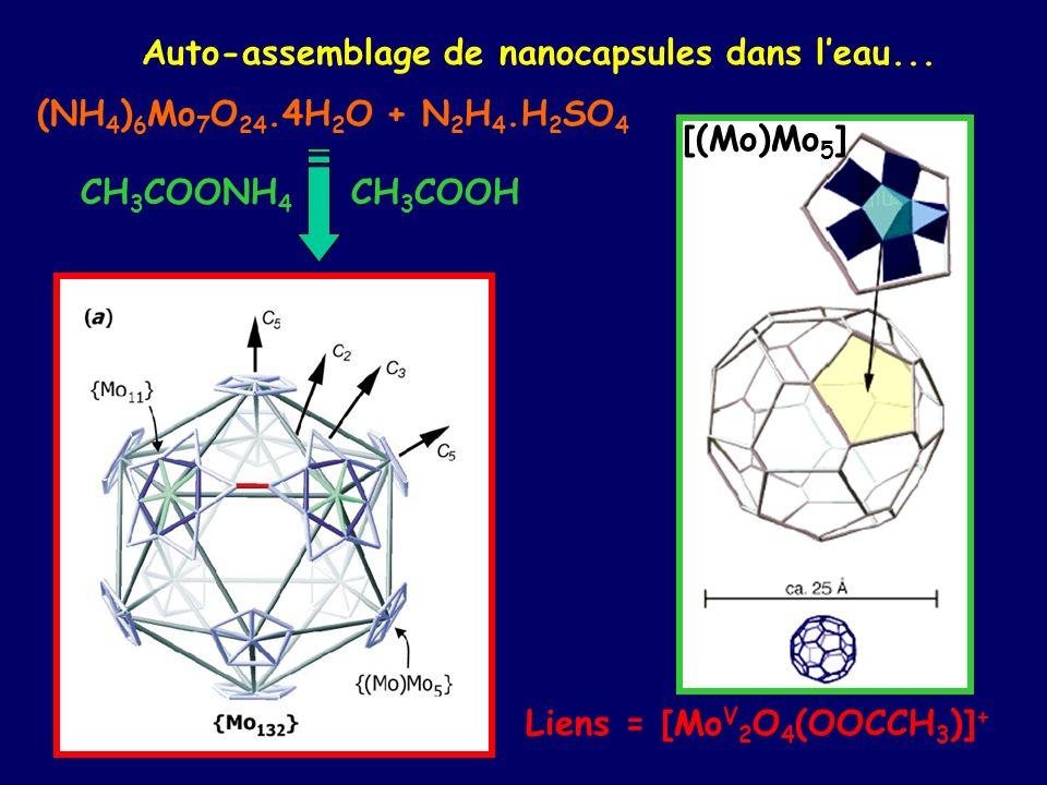 Auto-assemblage de nanocapsules dans l'eau...