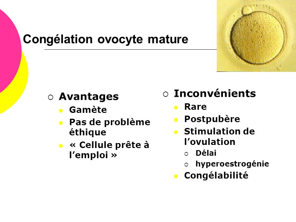 Congélation ovocyte mature