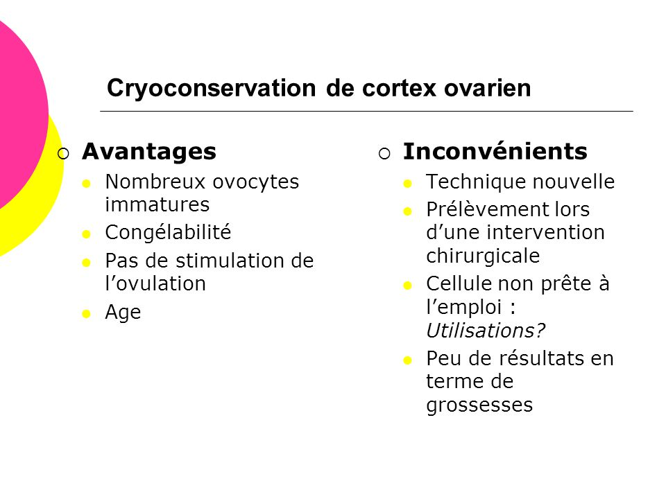 Cryoconservation de cortex ovarien