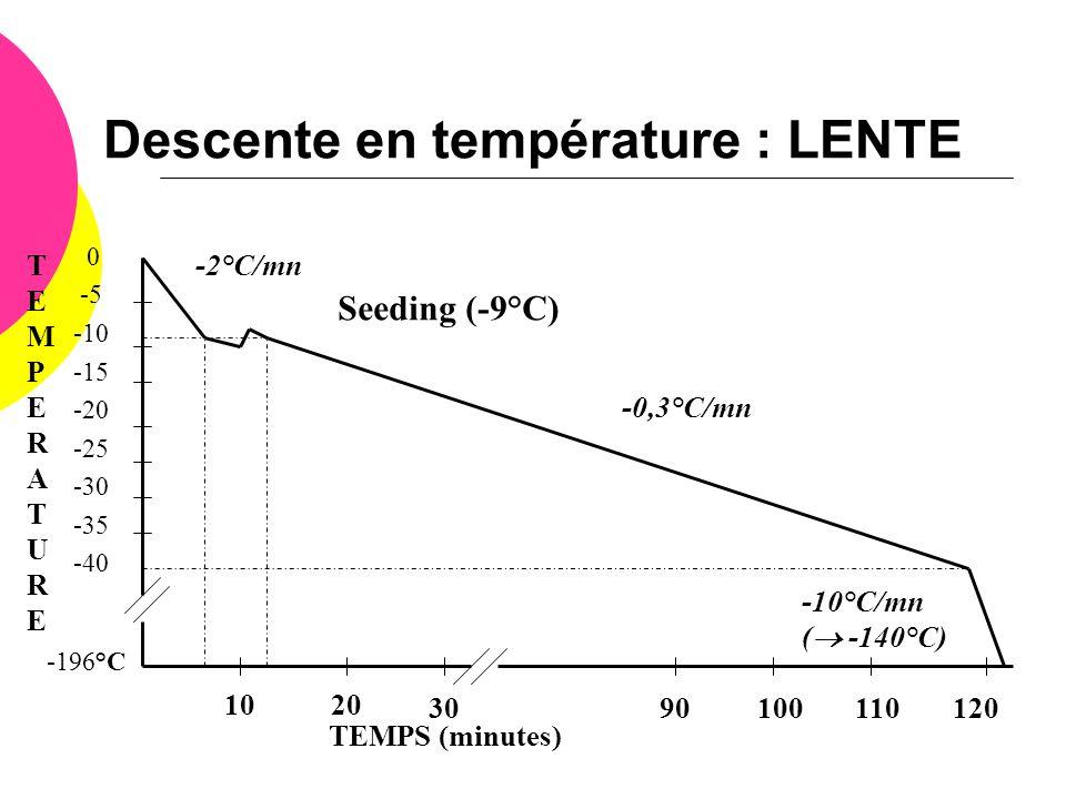 Descente en température : LENTE