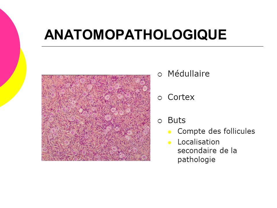 ANATOMOPATHOLOGIQUE Médullaire Cortex Buts Compte des follicules