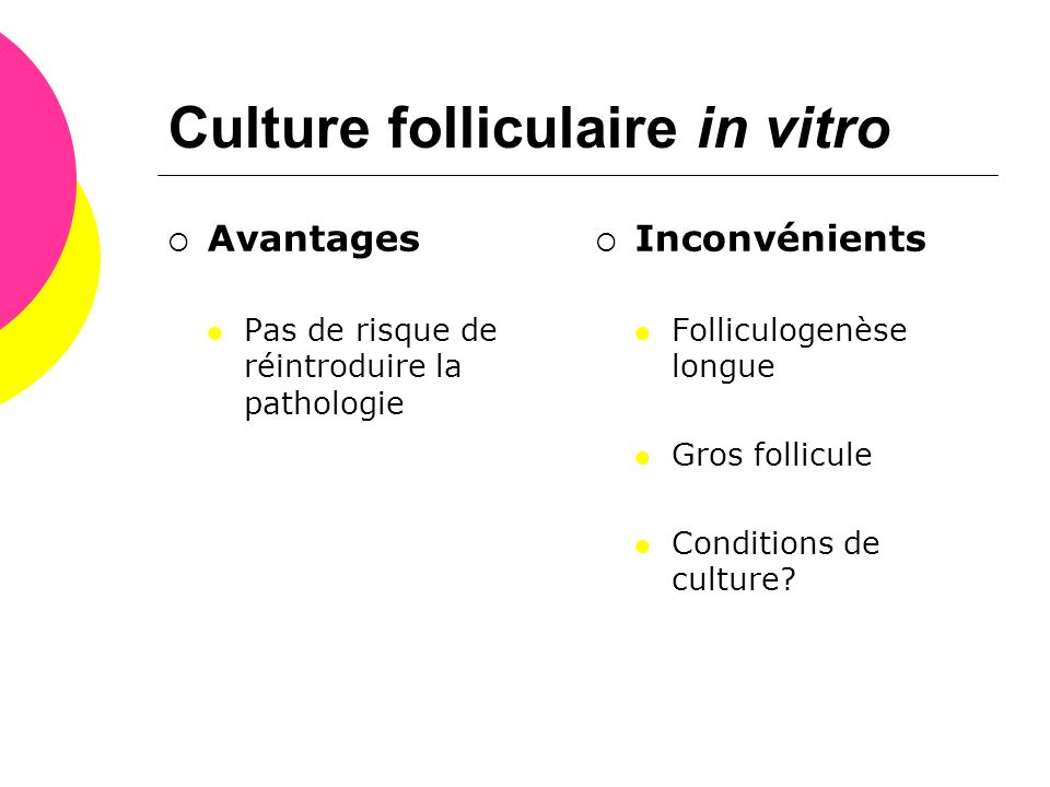 Culture folliculaire in vitro