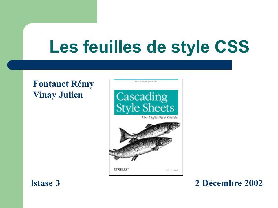 Les feuilles de style CSS