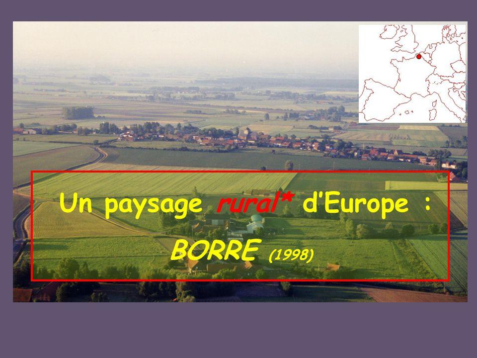 Un paysage rural* d'Europe : BORRE (1998)