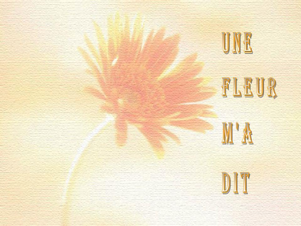 une fleur m a dit