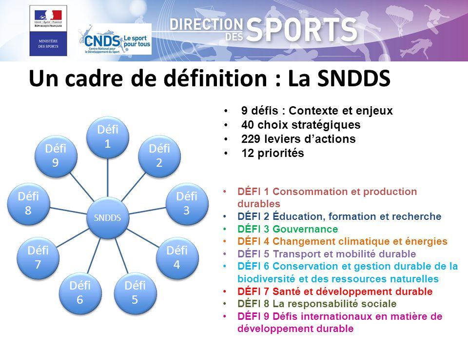 Un cadre de définition : La SNDDS