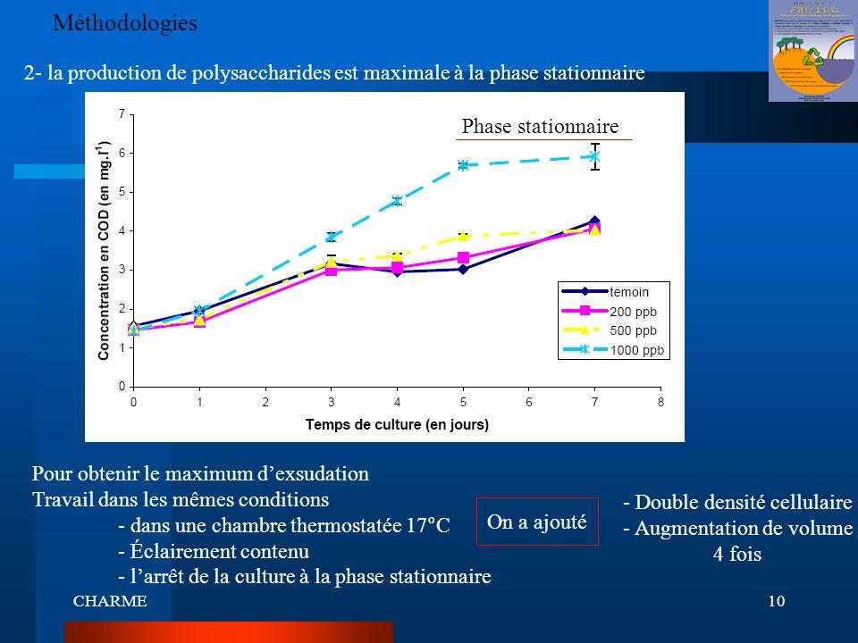 Méthodologies 2- la production de polysaccharides est maximale à la phase stationnaire. Phase stationnaire.