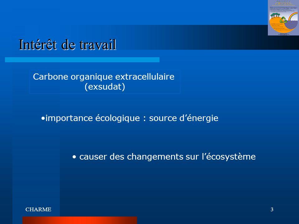 Intérêt de travail Carbone organique extracellulaire (exsudat)