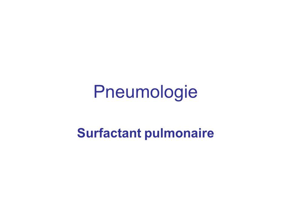 Surfactant pulmonaire