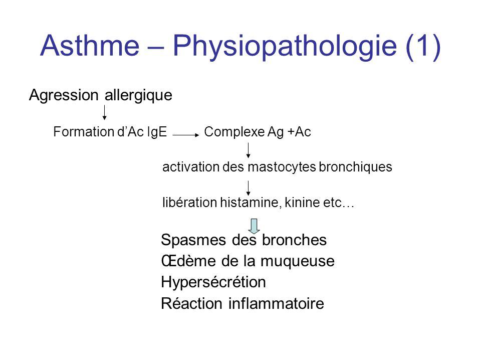 Asthme – Physiopathologie (1)