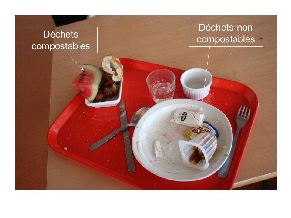 Déchets non compostables