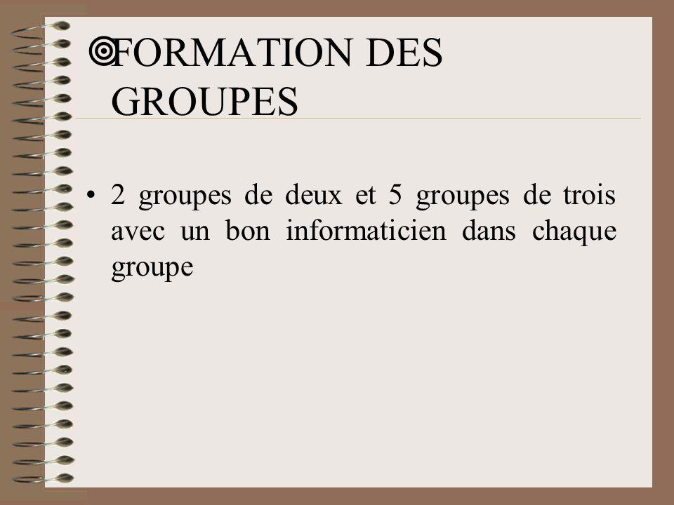 FORMATION DES GROUPES 2 groupes de deux et 5 groupes de trois avec un bon informaticien dans chaque groupe.