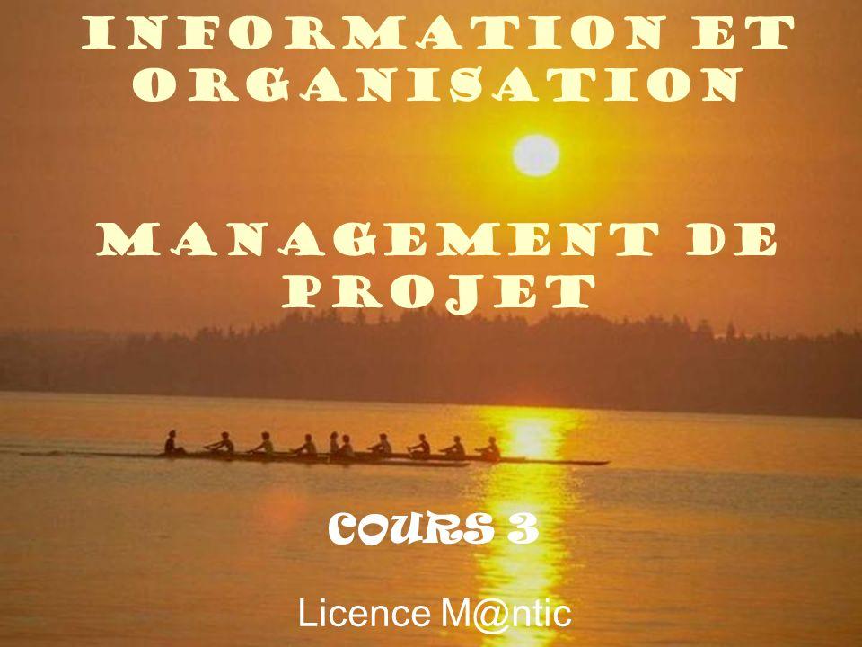 Information et organisation Management de projet