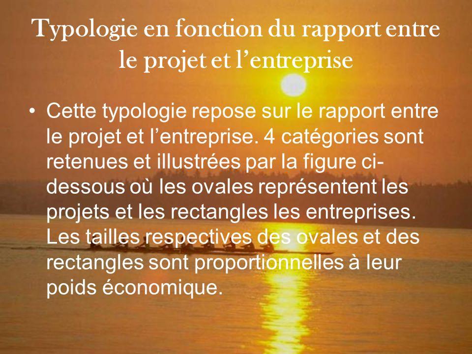 Typologie en fonction du rapport entre le projet et l'entreprise
