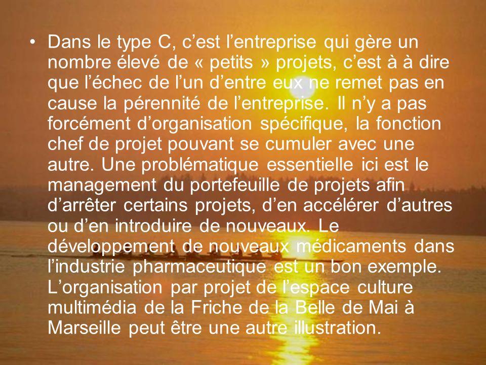 Dans le type C, c'est l'entreprise qui gère un nombre élevé de « petits » projets, c'est à à dire que l'échec de l'un d'entre eux ne remet pas en cause la pérennité de l'entreprise.